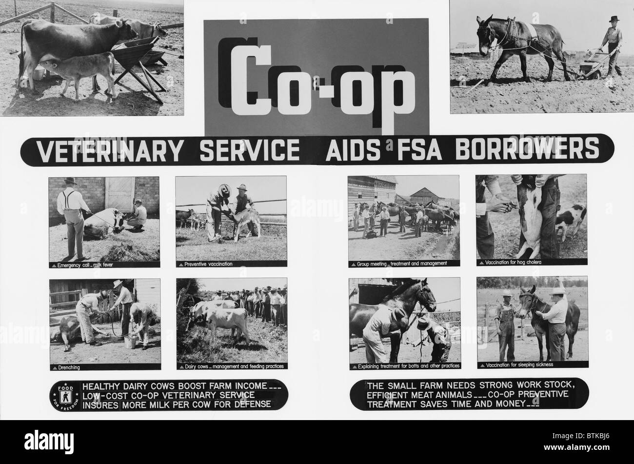 Farm Security Administration poster promoting rural cooperatives veterinary services. Poor farmers were organized - Stock Image