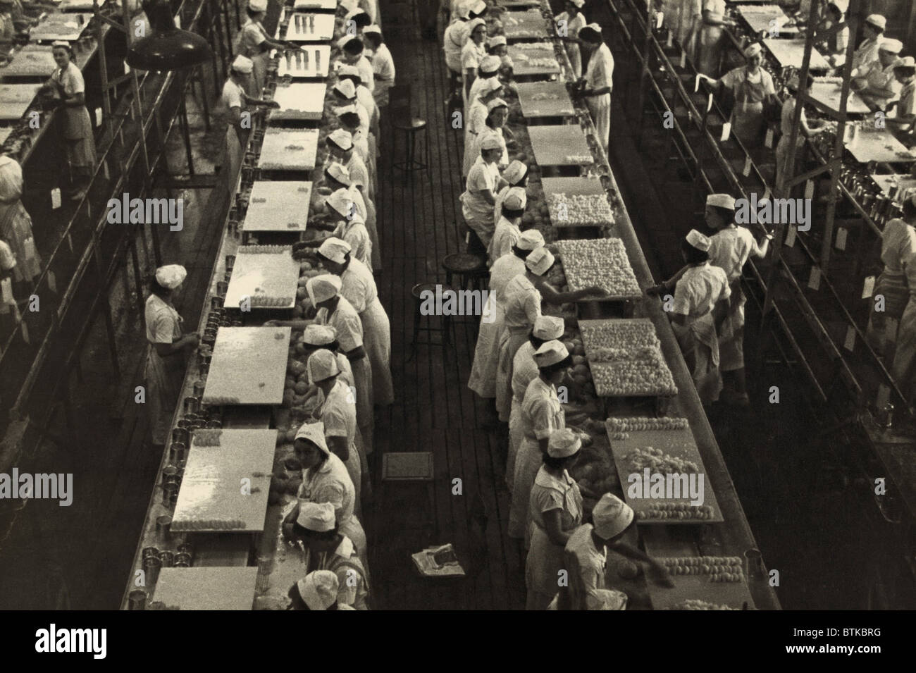 Women working in a grapefruit canning factory at Winter Haven, Florida. The New Deal Agricultural Adjustment Act - Stock Image