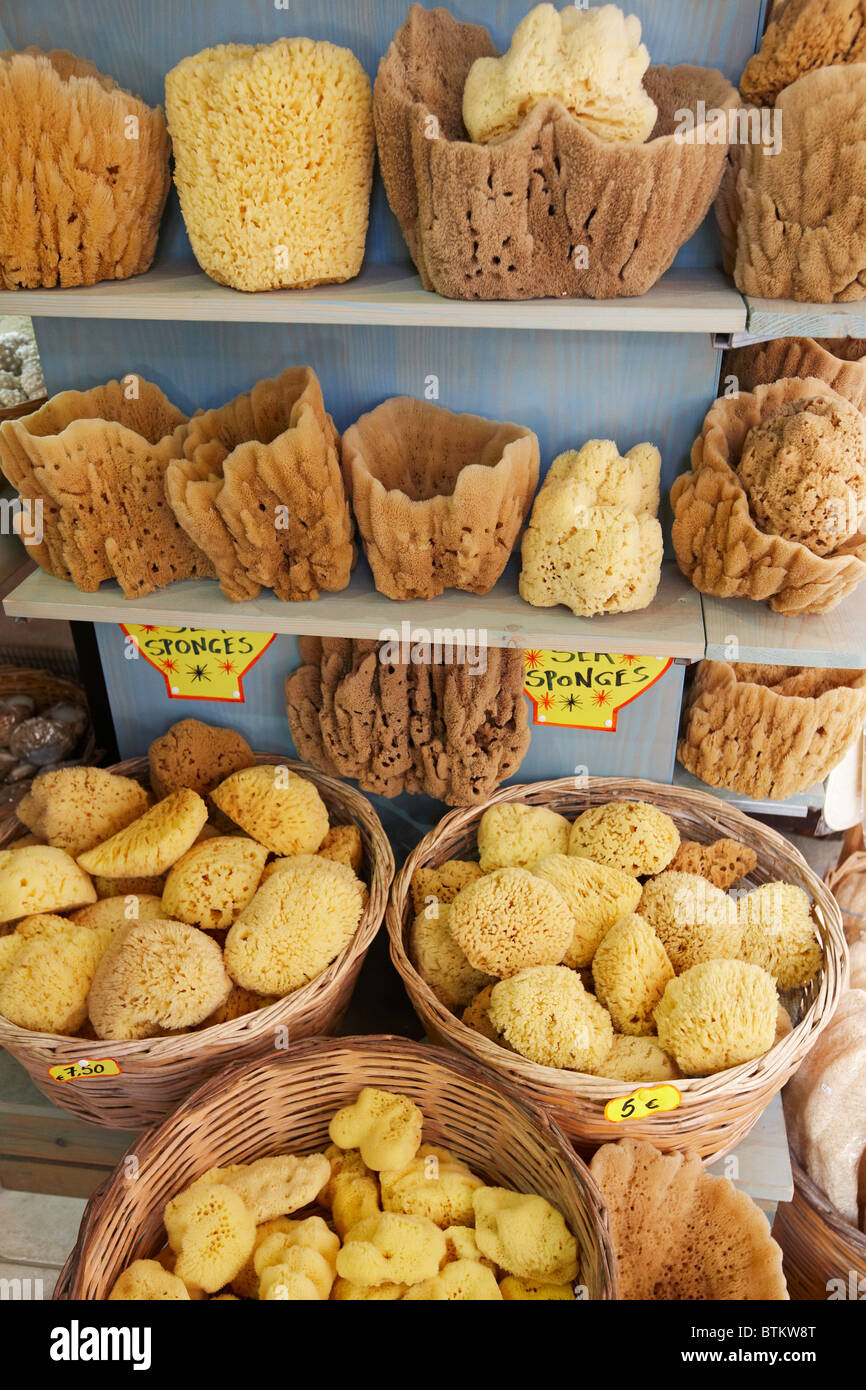 A selection of natural sea sponges displayed for sale a shop. Crete island, Greece. - Stock Image