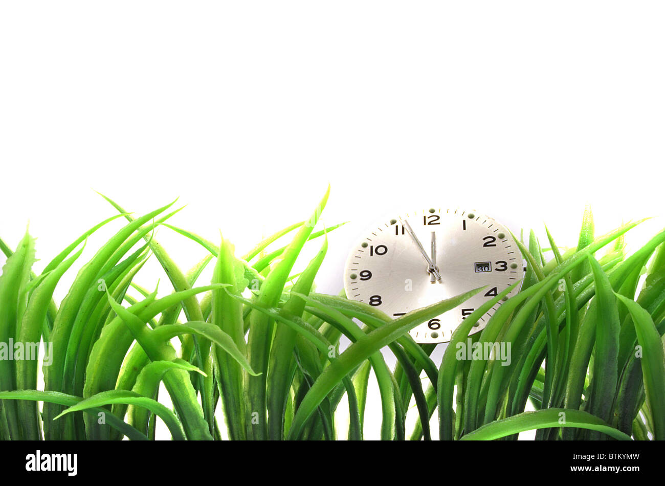 A clock lying in some blades of grass. All isolated on white background. - Stock Image