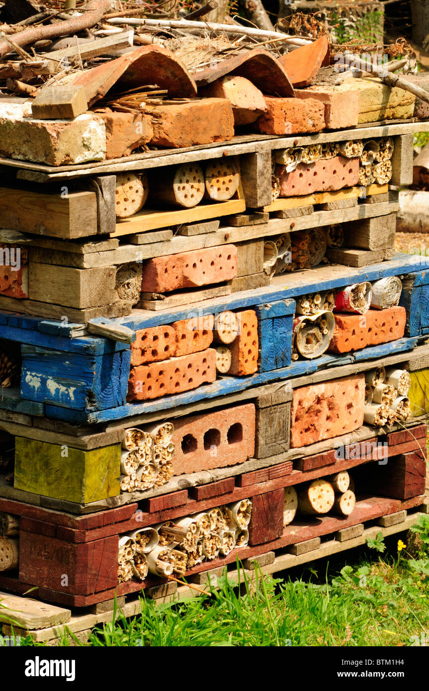Bug Hotel - artificial home provided for insects and other invertebrates. Kent, England - Stock Image