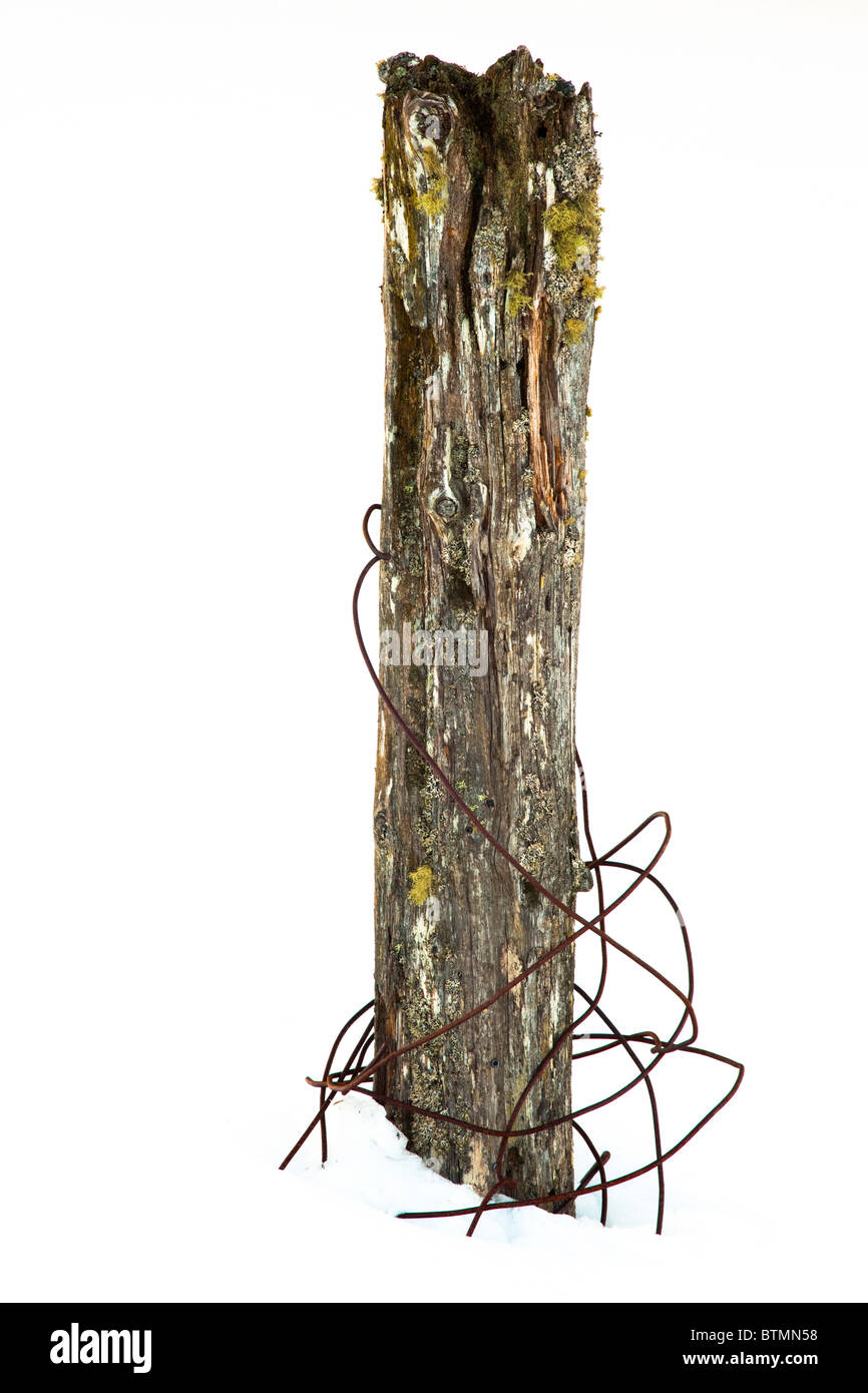 Scotland, Scottish Highlands, Cairngorms National Park. Wire around a snow covered fence post near Grantown on Spey. - Stock Image