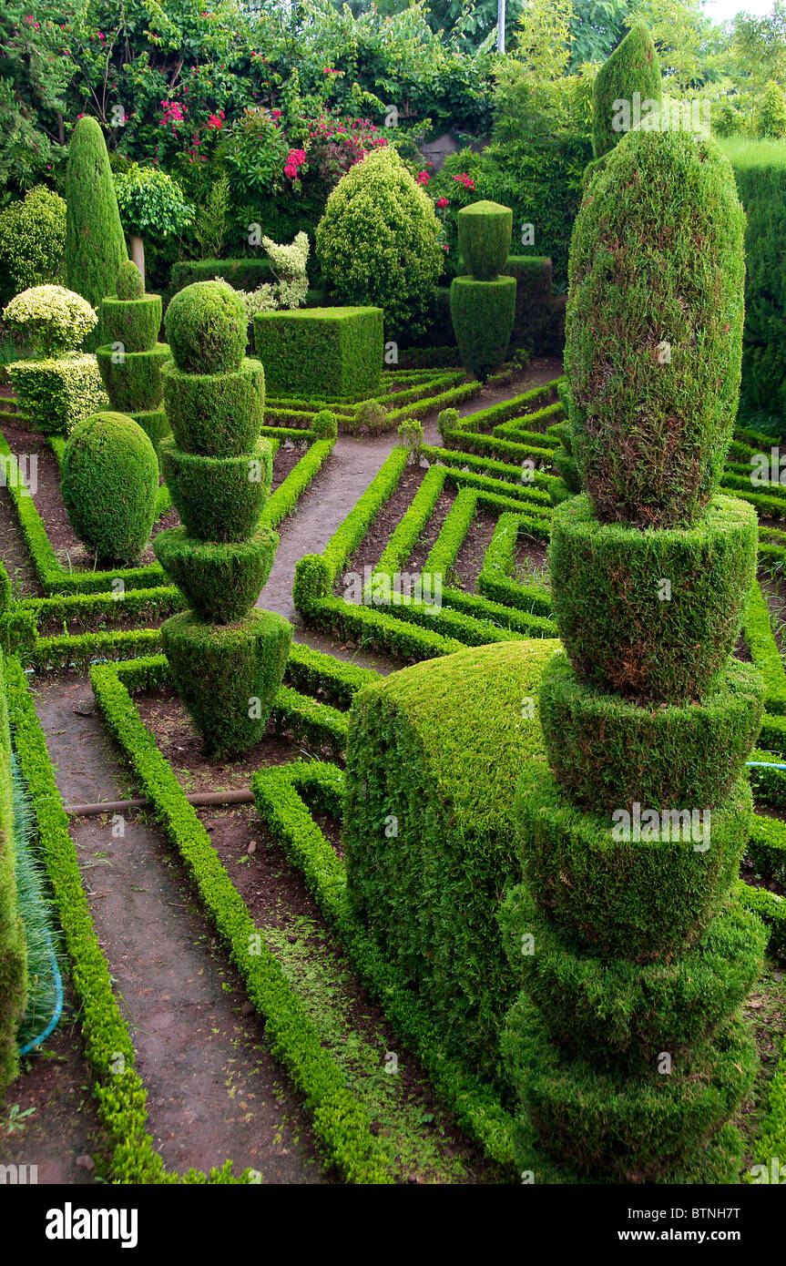 Topiary Stock Photos & Topiary Stock Images