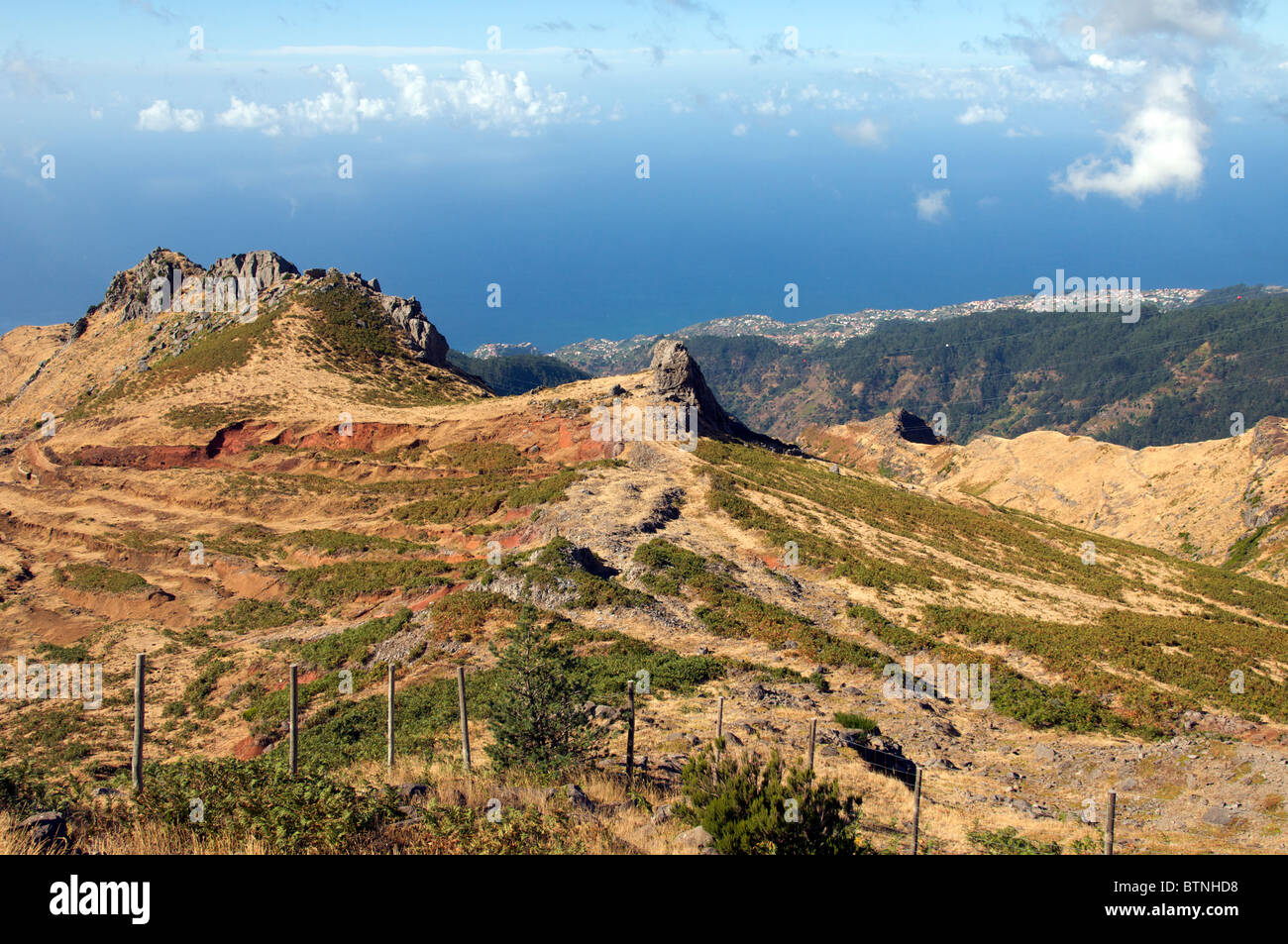 West Coast Madeira Portugal - Stock Image