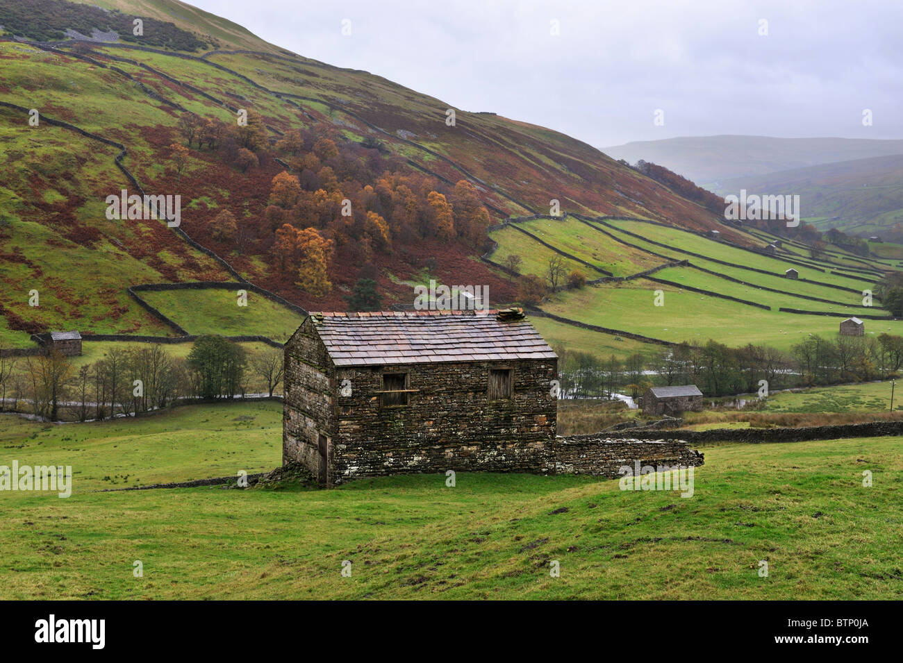 Rainy Autumn day with traditional stone barns at Stonesdale, near Keld, Yorkshire Dales National Park, England. - Stock Image