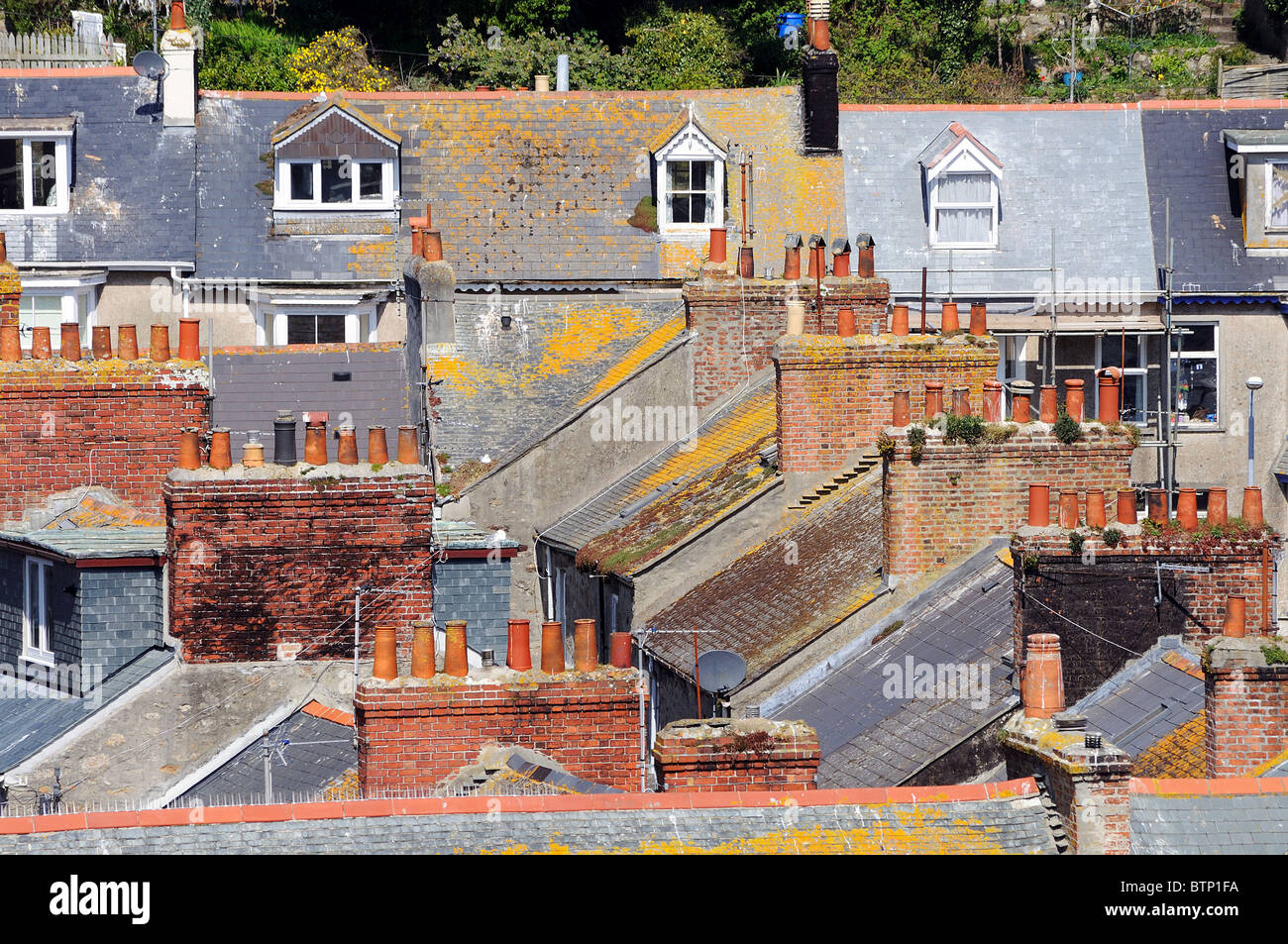 rooftops of houses in exeter, devon, uk - Stock Image