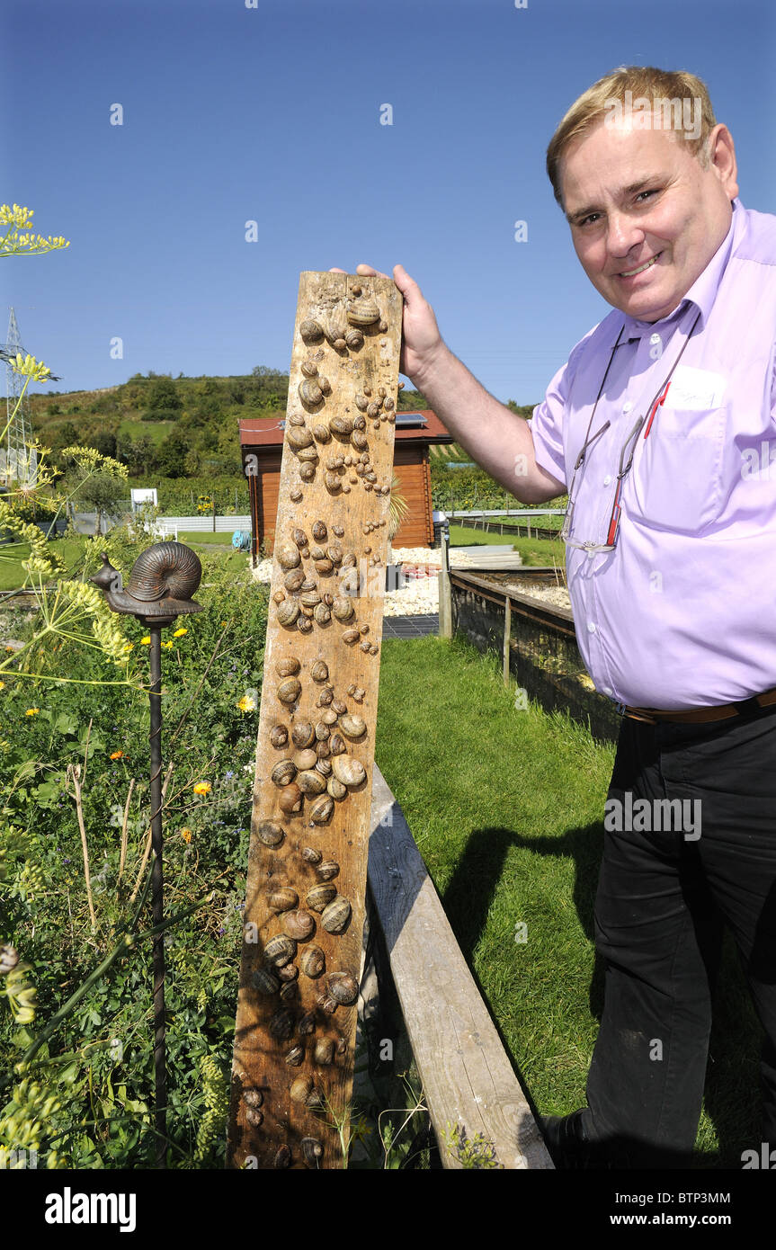 Mr Chalier's (the Hotelier of Sail farm and snail tasting' at Schneckenfarm Pfalzschnecke.,in the village  Grünstadt - Stock Image