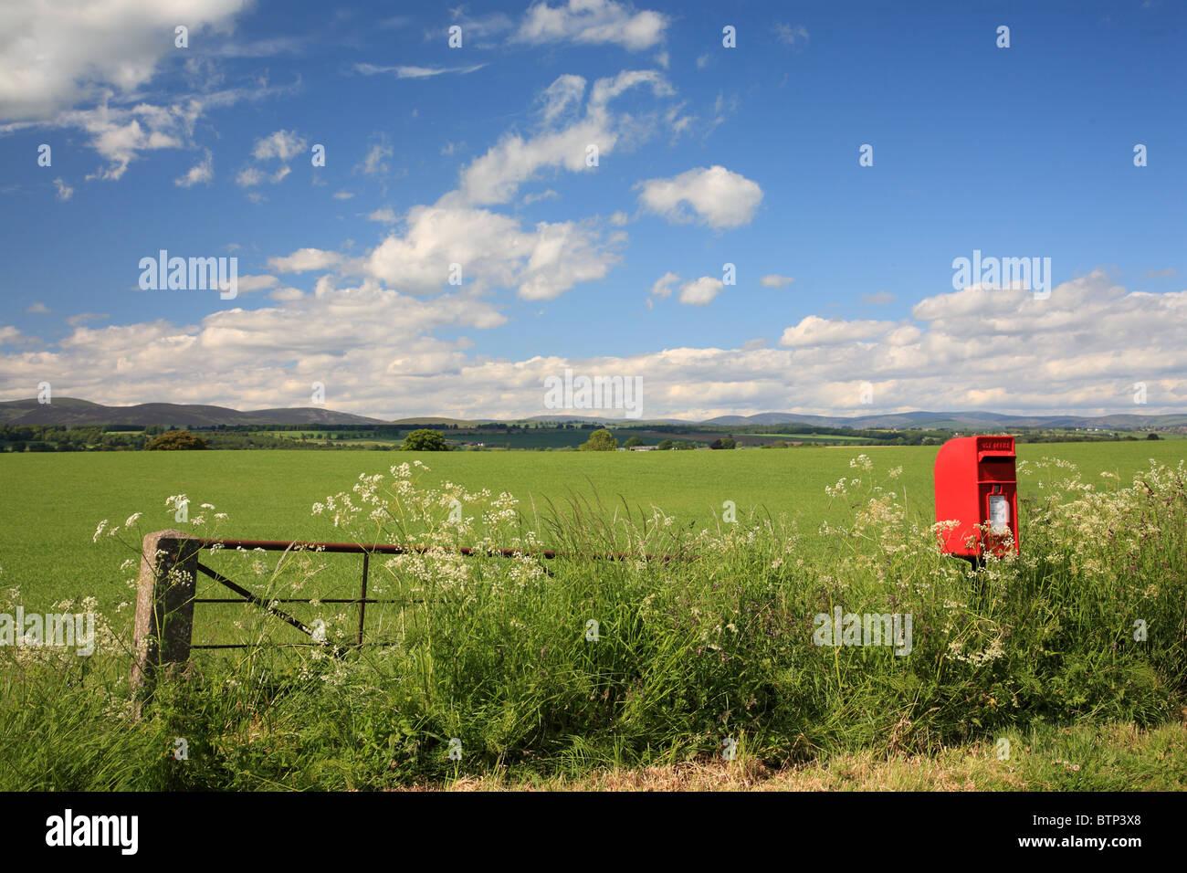 Uk Scotland Tayside Angus Old Post Box And Farm Fields Stock Photo Alamy