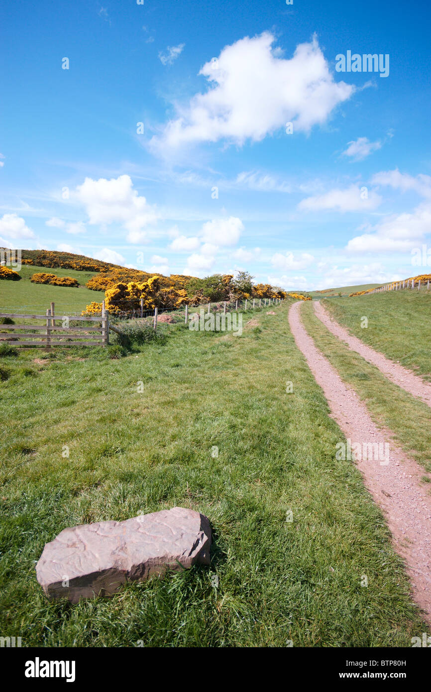 Scotland, St Abbs's Head, View of dirt track at countryside - Stock Image