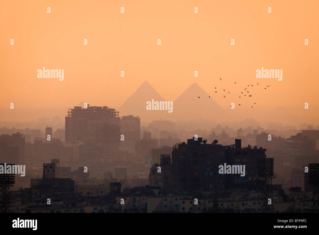 Cairo city skyline and Pyramids and some birds - Stock Image