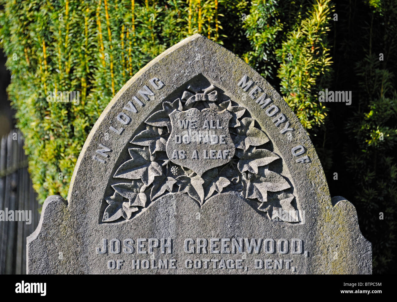 'WE ALL DO FADE AS A LEAF', inscription on gravestone. Church of Saint Andrew, Dent,  Dentdale, Yorkshire - Stock Image