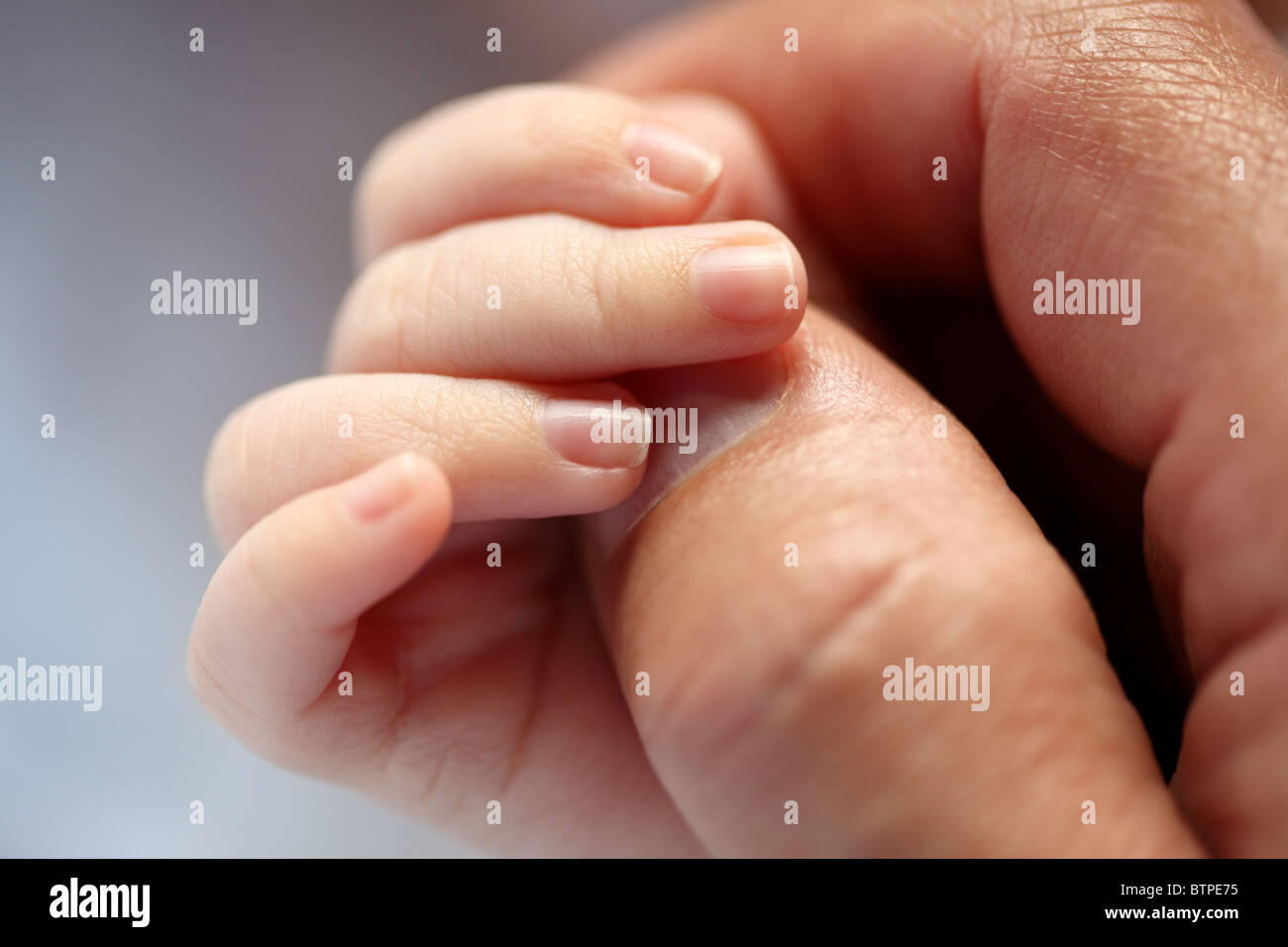 Newborn baby holding hands with his fatherStock Photo