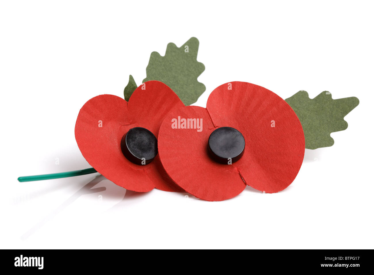 Remembrance Sunday poppy - Stock Image