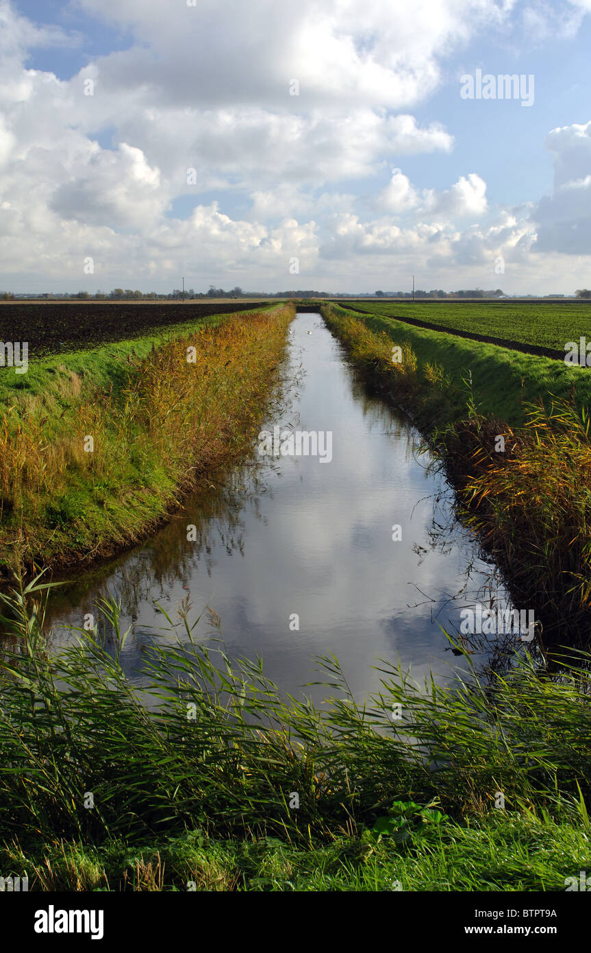Channel Drainage For Patios: Fenland Drainage Channel Cambridgeshire England Stock