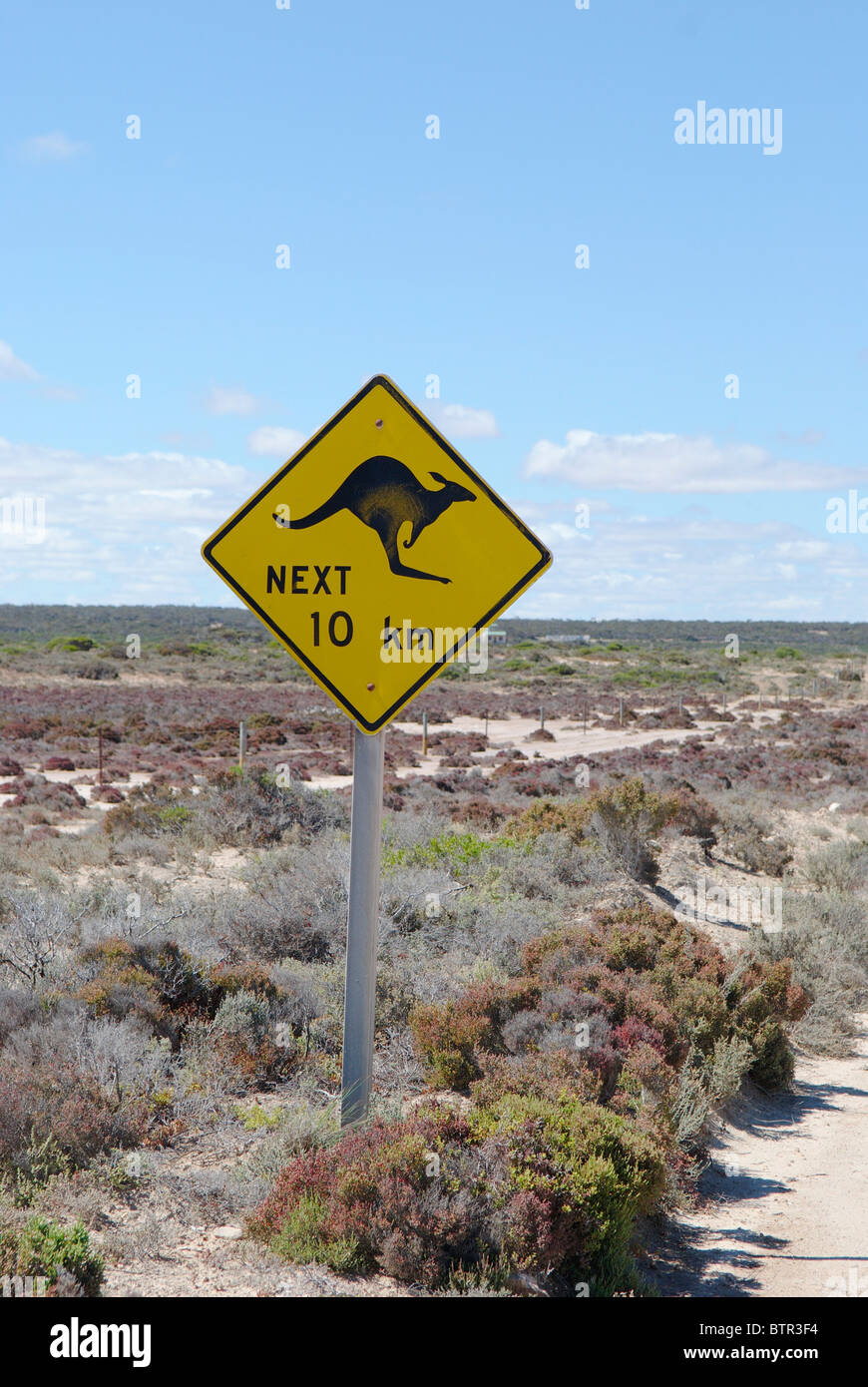 Australia, Kangaroo crossing sign - Stock Image