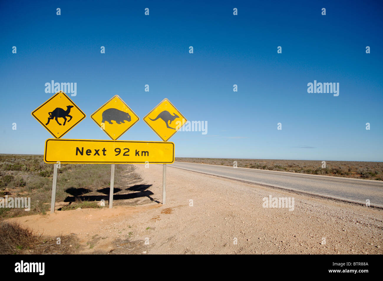 Australia, Nullabor, Animal crossing sign on road side - Stock Image