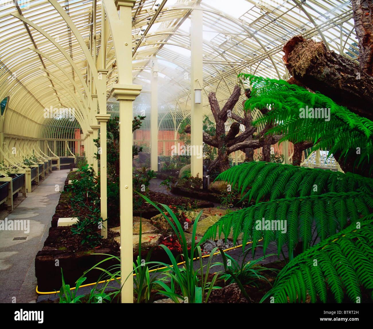 Irish National Botanic Gardens, Co Dublin, Ireland; Palm House
