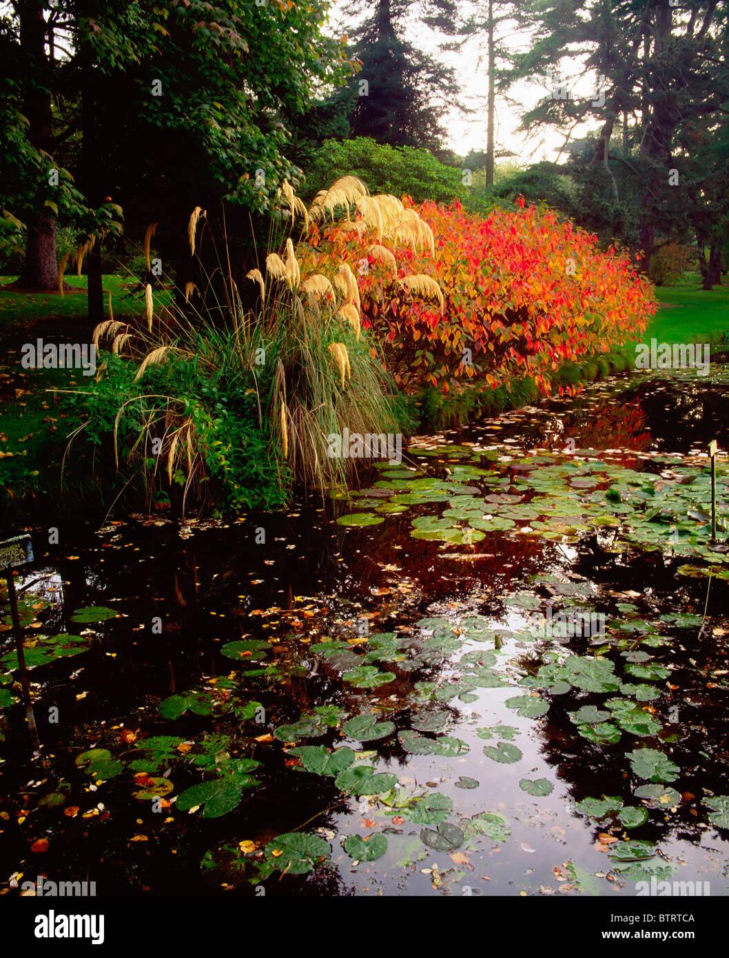 Irish National Botanic Gardens, Dublin, Co Dublin, Ireland Stock ...