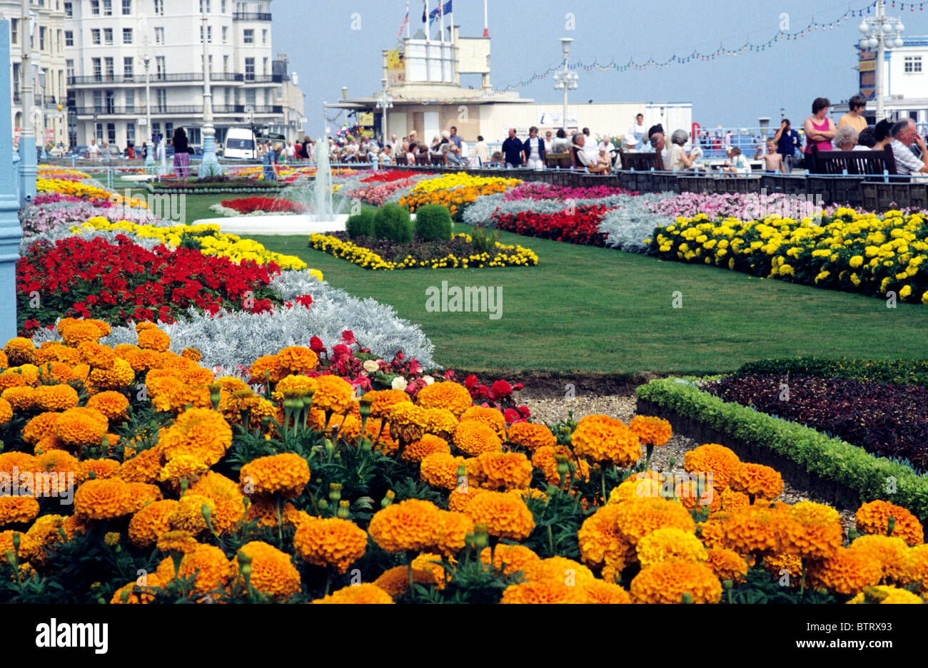 Eastbourne Sussex, seafront flower gardens flowers garden couth coast coastal English resort promenade promenades - Stock Image