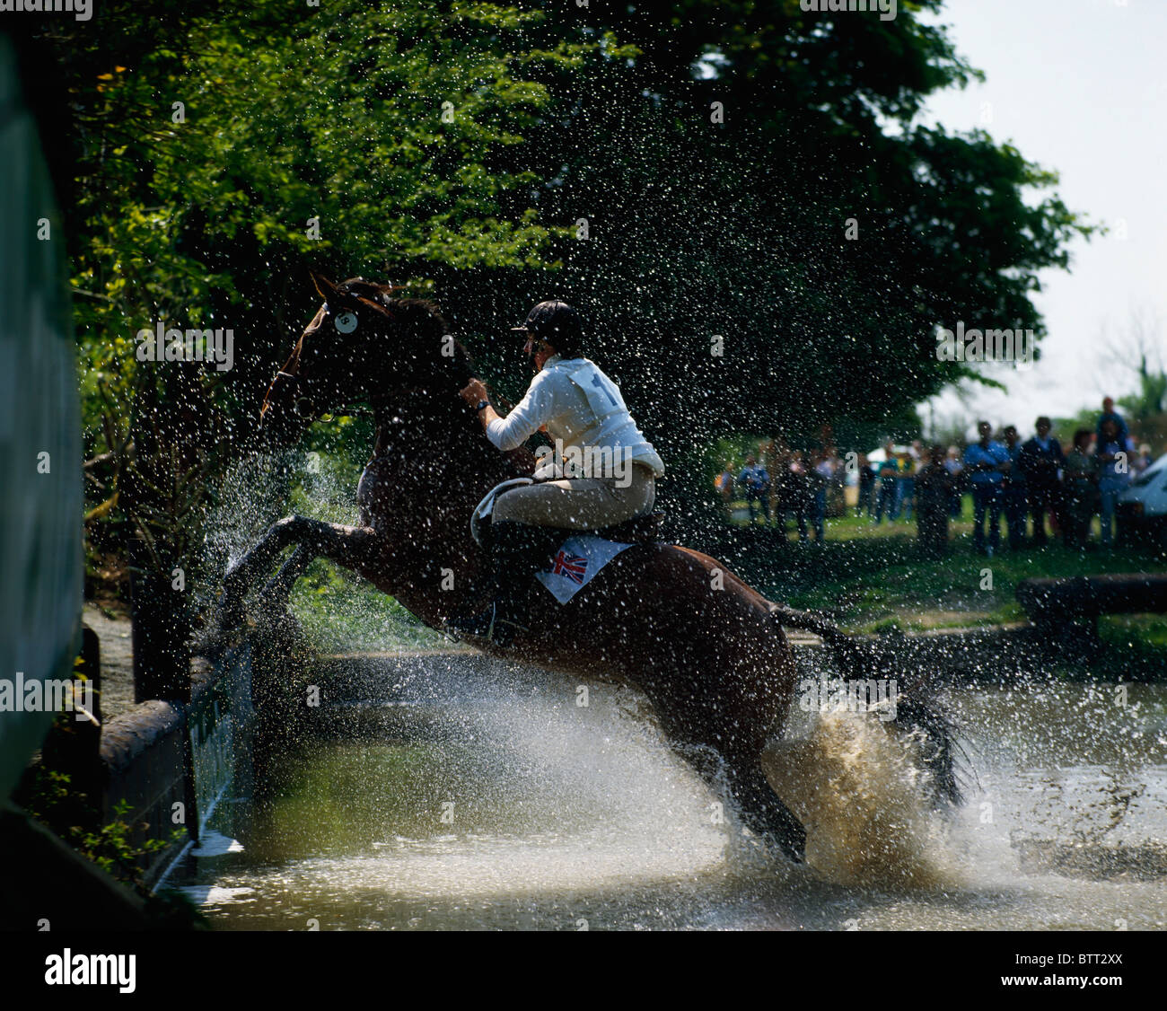 Point To Point Racing, Ireland - Stock Image