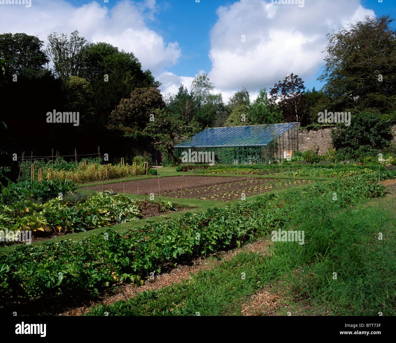 Creagh, Skibbereen, Co Cork, Ireland, Vegetable Beds In A Walled Garden - Stock Image