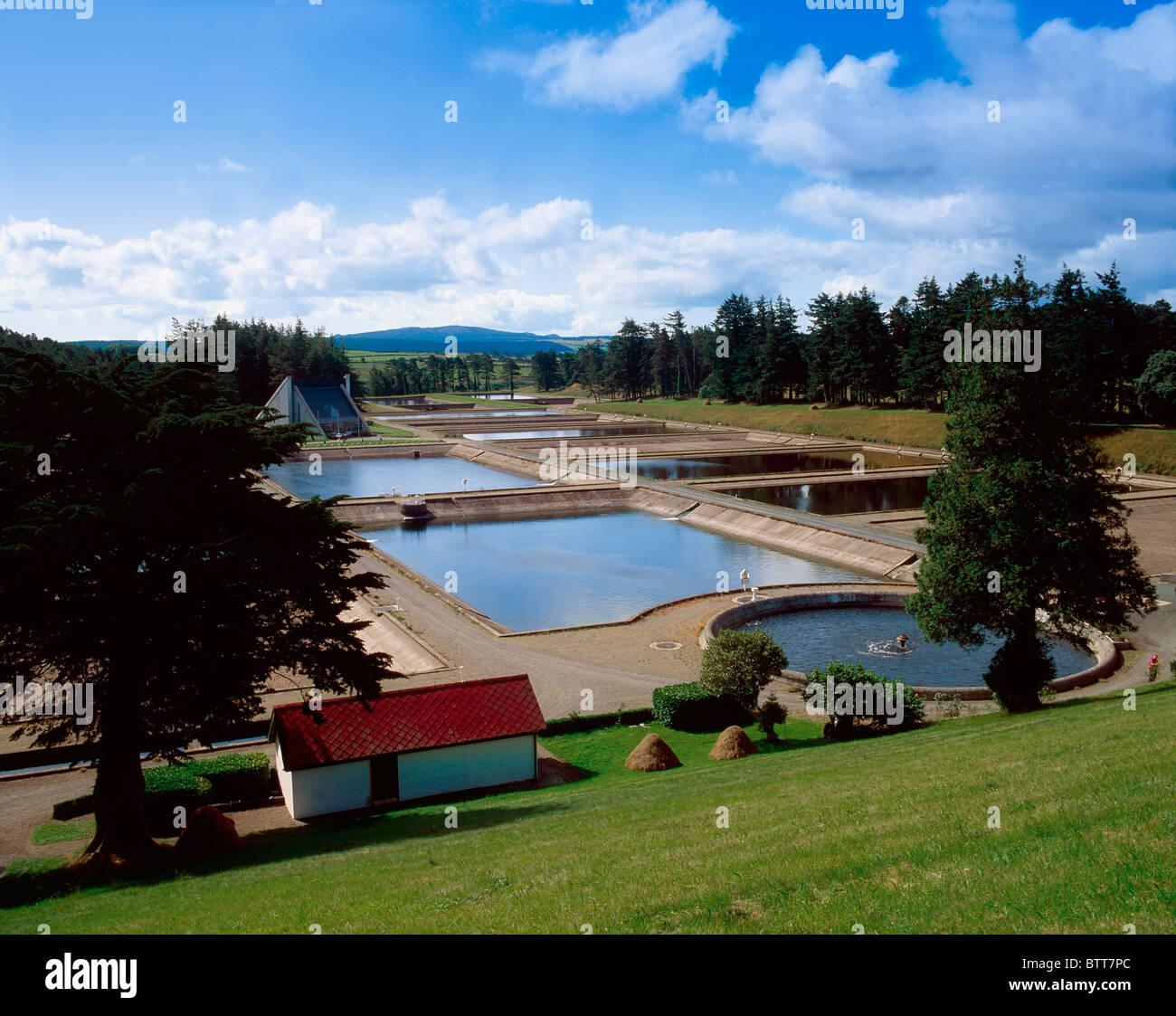 Fresh Water Filtration Beds, Vartry Reservoir, Co Wicklow, Ireland - Stock Image