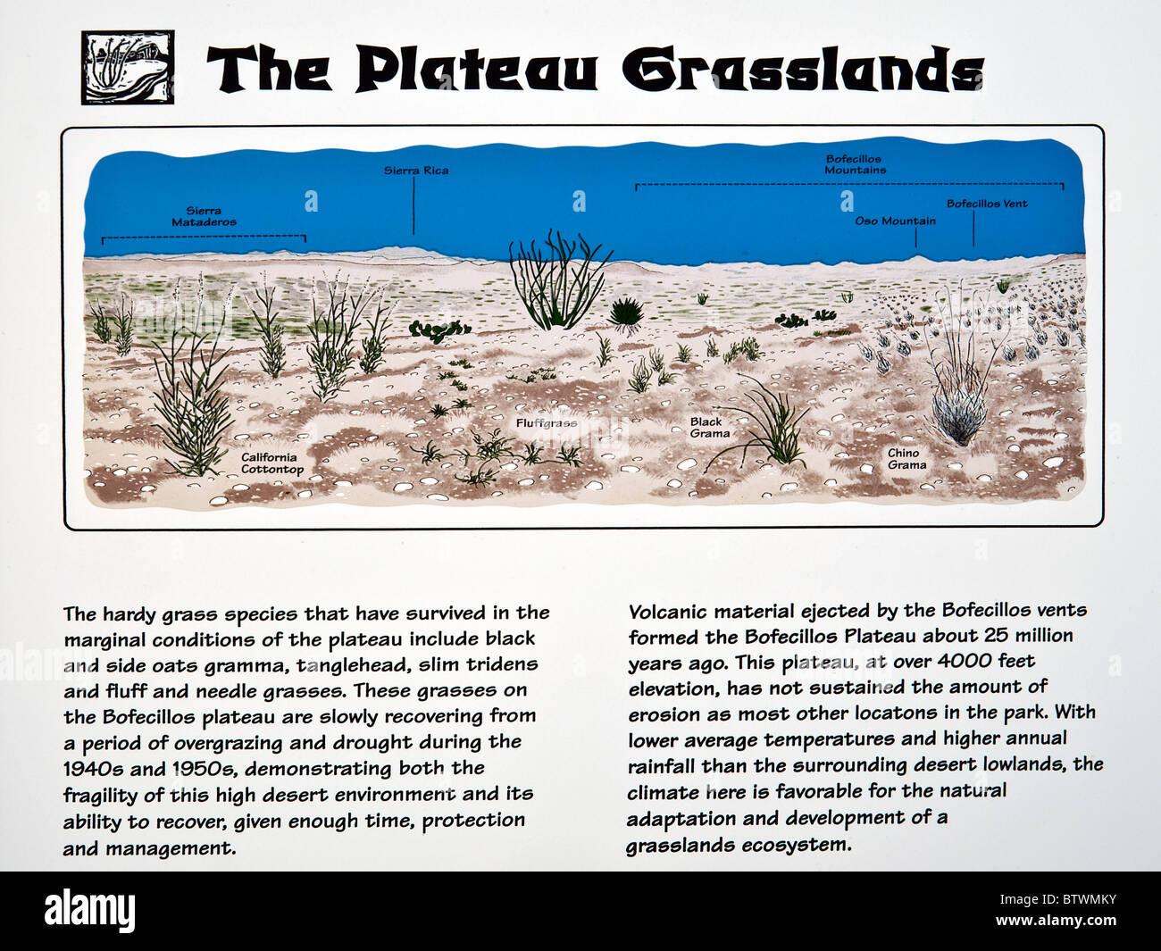 Grasslands information sign at Big Bend Ranch State Park, Texas, USA - Stock Image
