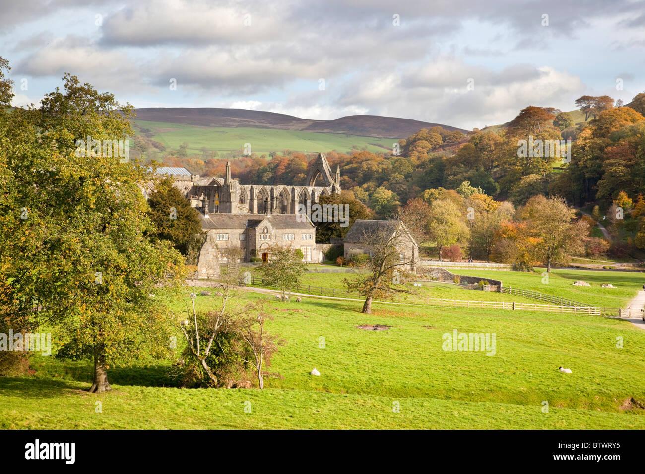 Bolton Abbey estate; Yorkshire - Stock Image