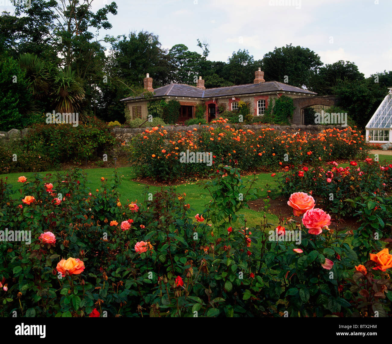 Tea Rooms, Ardgillan Demesne, Balbriggan, Co Dublin, Ireland; Rose Garden And Tea Rooms During Summer - Stock Image