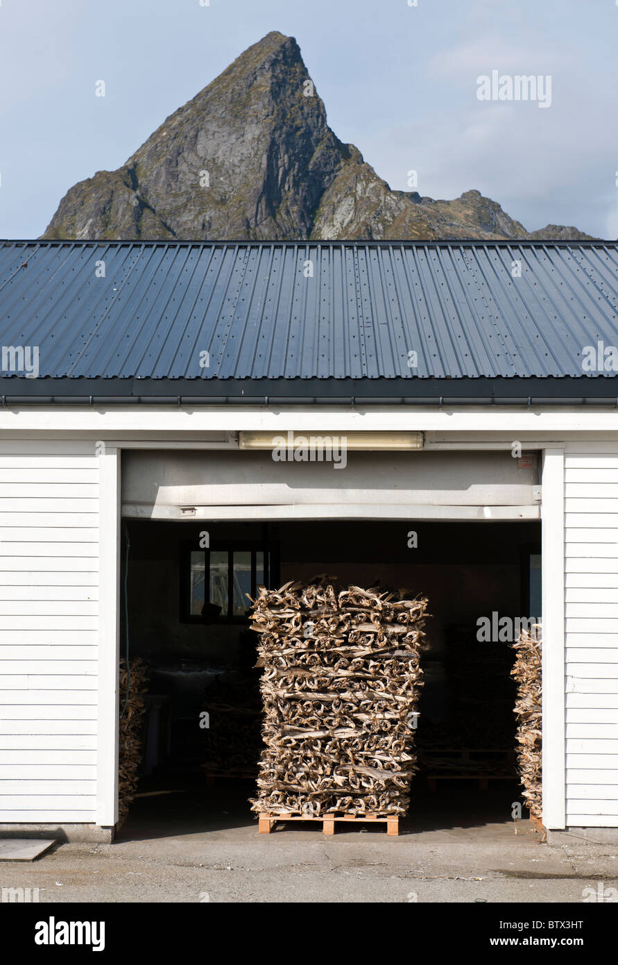 A pallet with stockfish (dried cod) in a door opening. Steep mountain in the background. From Lofoten islands, North - Stock Image