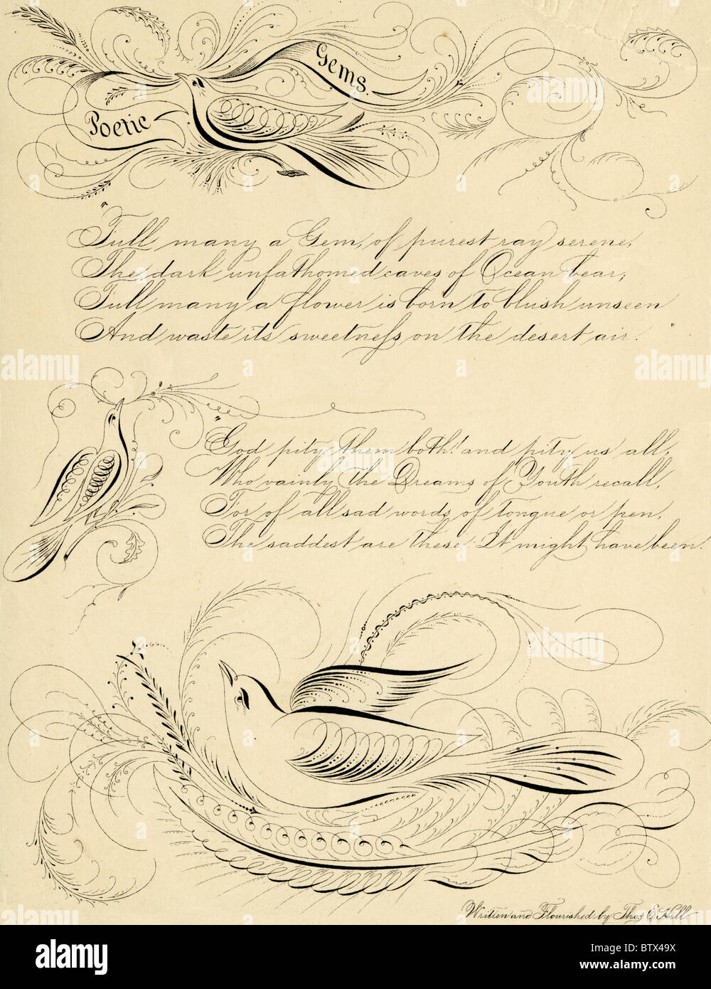 Circa 1840s calligraphic flourish of poetry and birds, by Thomas E. Hill. - Stock Image