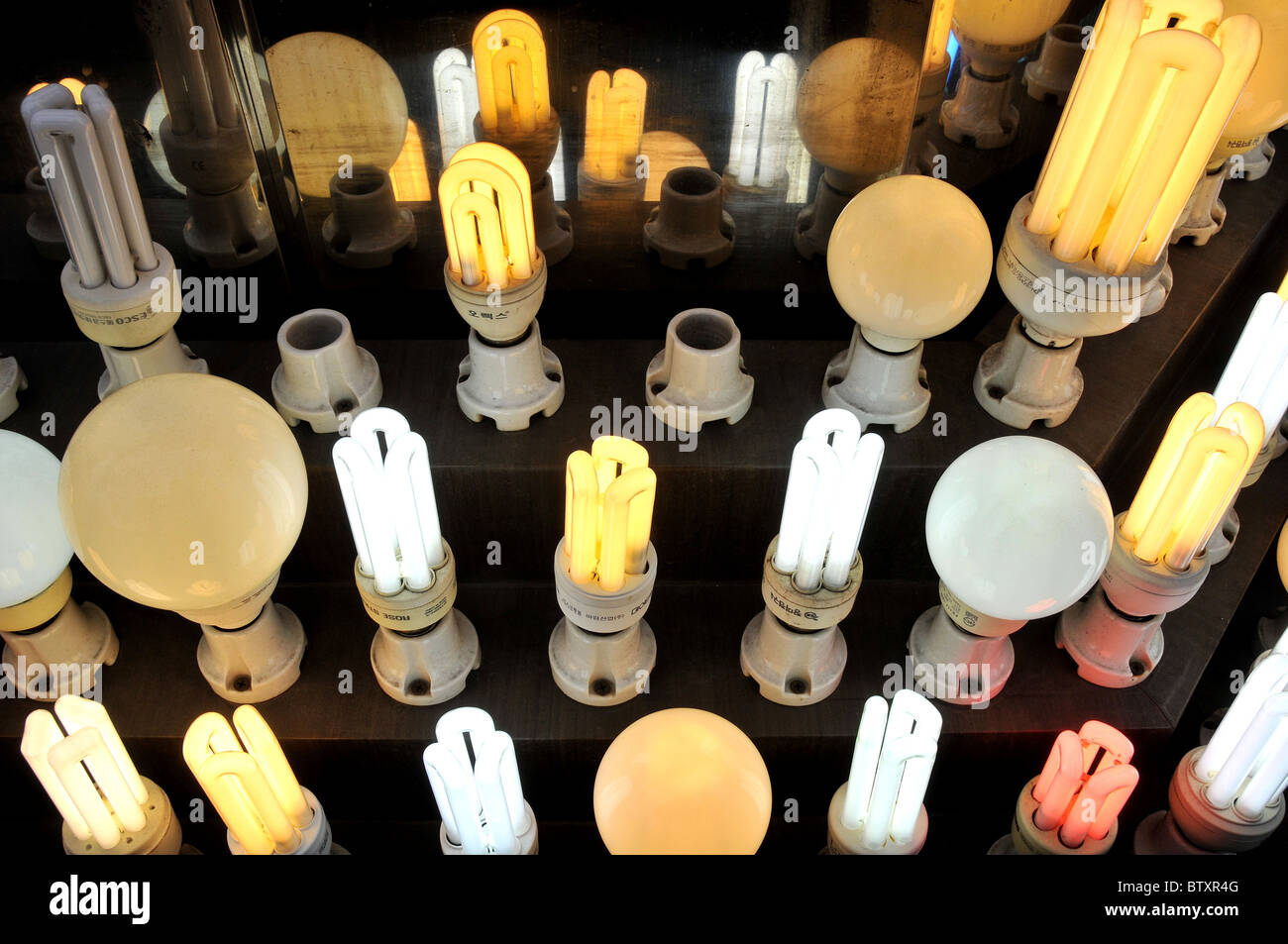Energy Efficient Light Bulb, Light Store, Seoul, South Korea   Stock Image