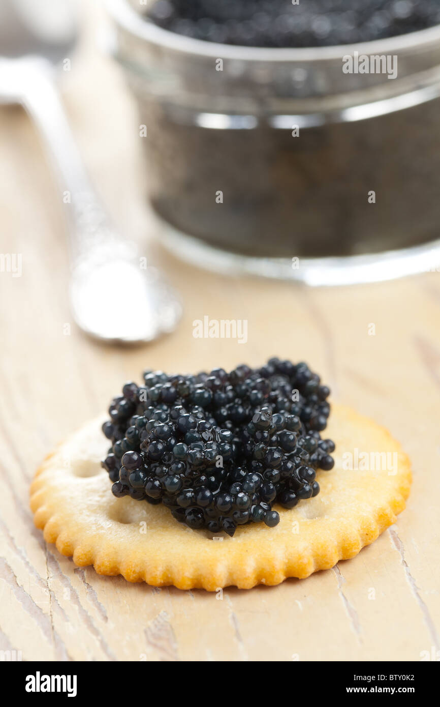 the black caviar - Stock Image