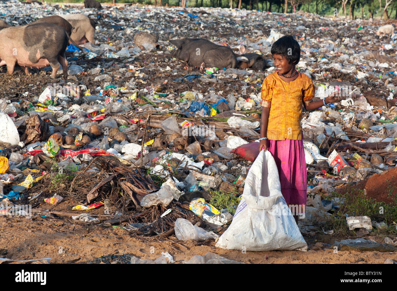 Poor Indian girl with a sack picking through an open rubbish tip surrounded by plastic bags and pigs. Andhra Pradesh, - Stock Image