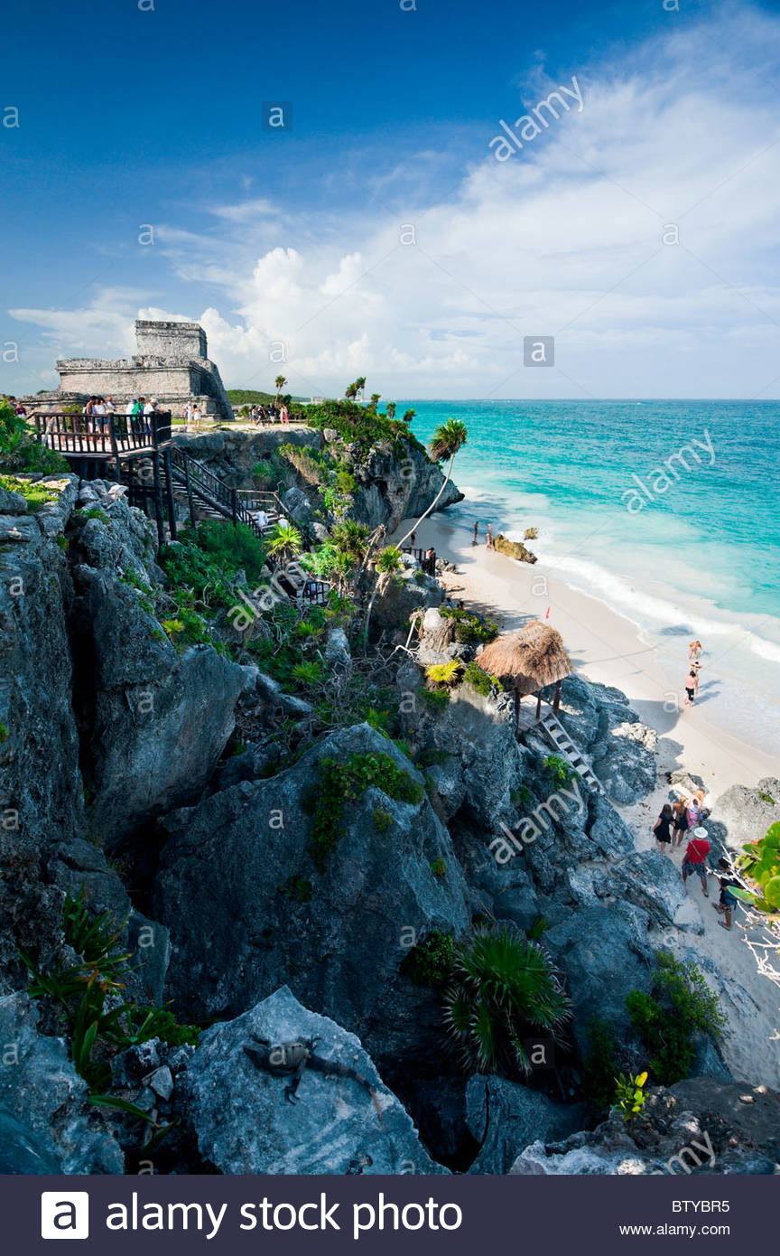 Iguana on rocks below the Mayan ruins at Tulum, Quintana Roo, Yucatan peninsula, Mexico. - Stock Image