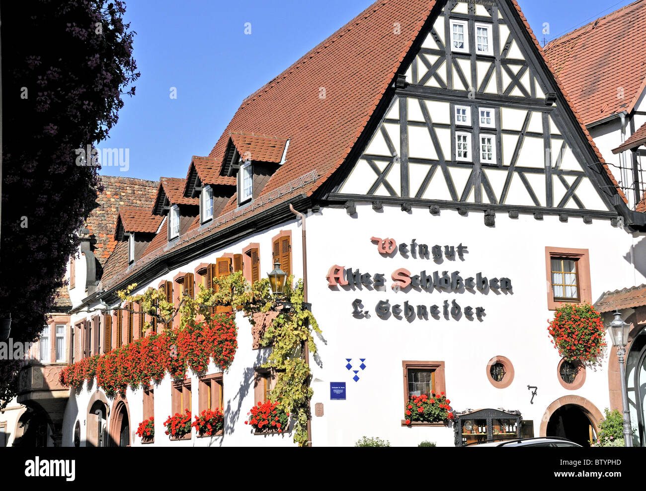 Half timbered winery (weingut) in the pretty village of St. Martin in the Pfalz or Palatinate region of Western Stock Photo