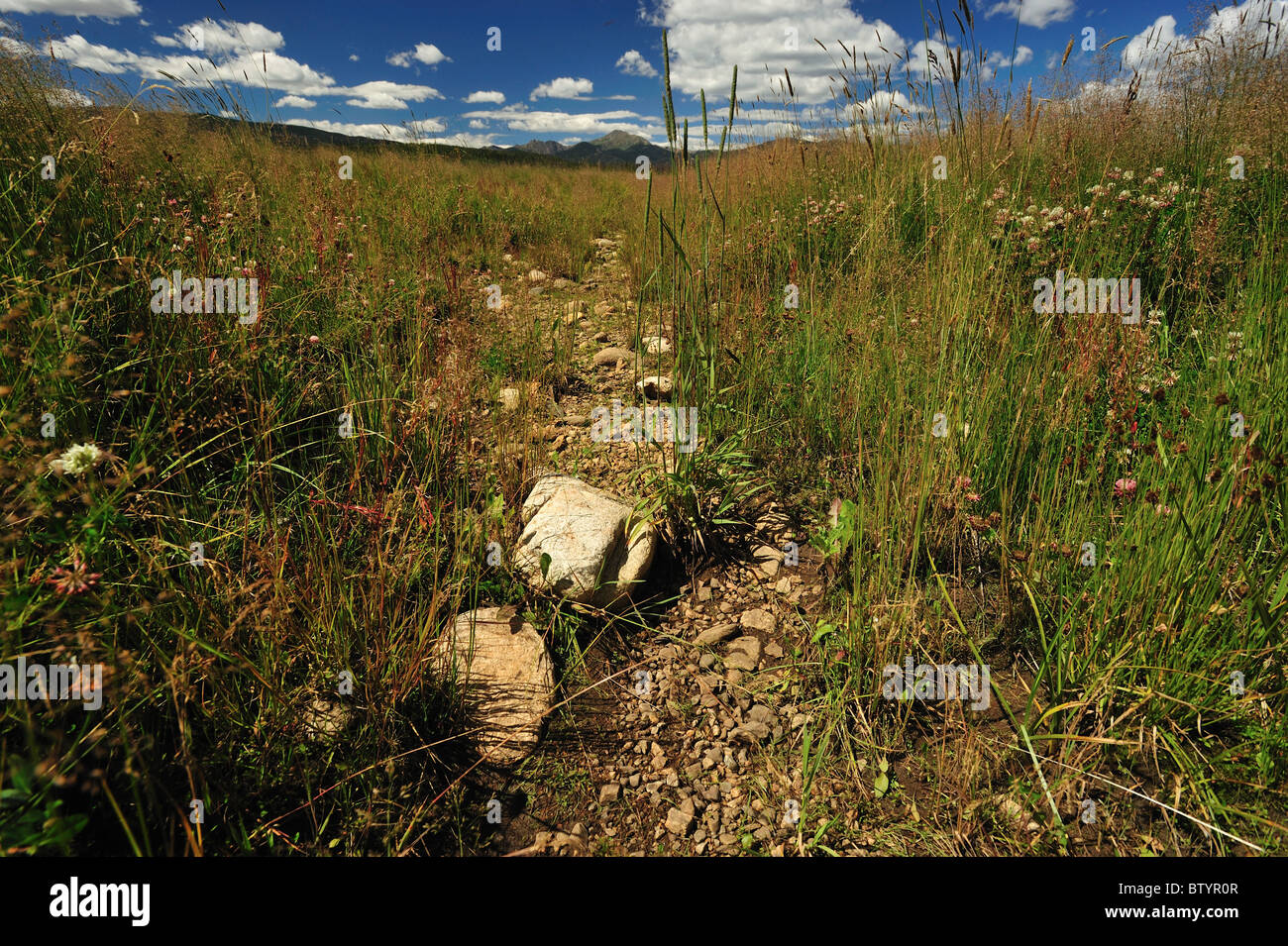 Dry Creek Stock Photos & Dry Creek Stock Images - Alamy