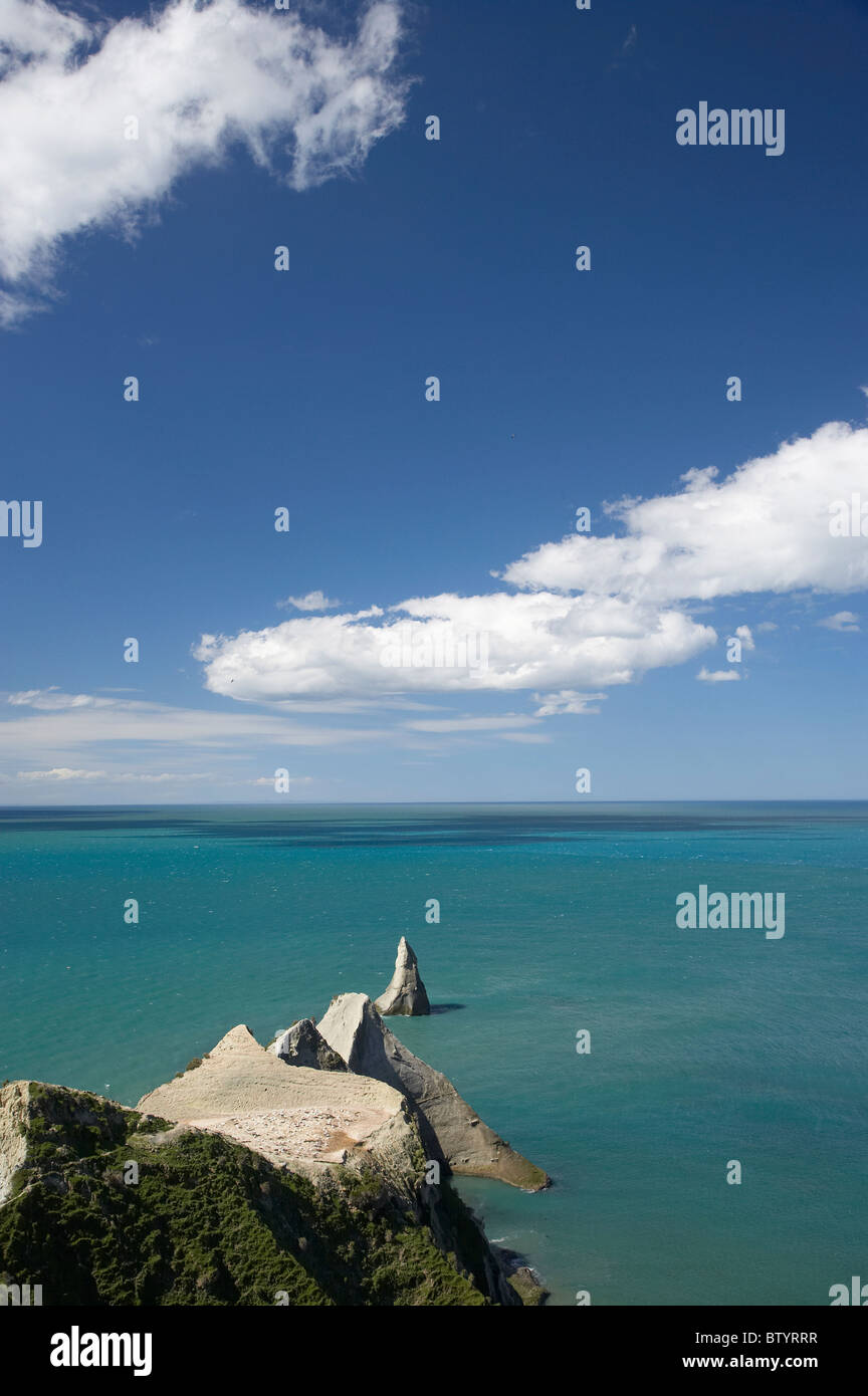 Cape Kidnappers Gannet Colony, Hawkes Bay, North Island, New Zealand - Stock Image