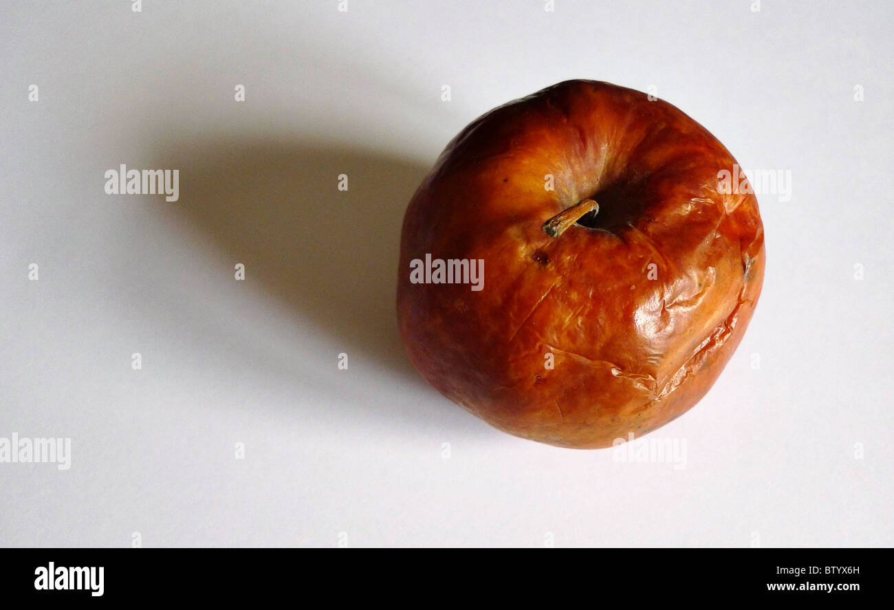 One bad rotten apple. - Stock Image