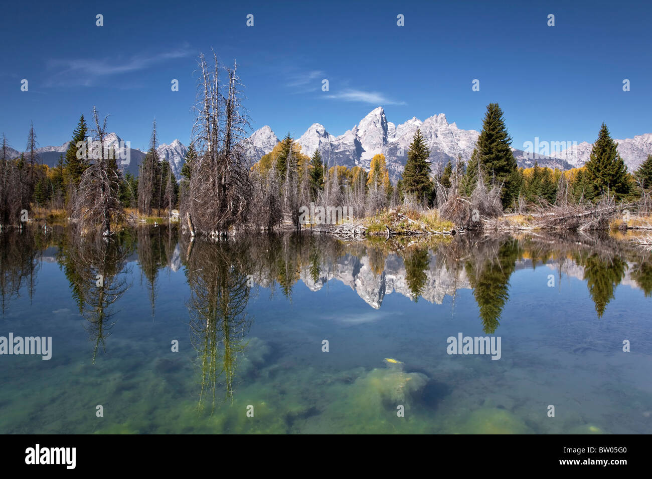 The glorious Grand Teton's reflected in the Beaver pond - Stock Image