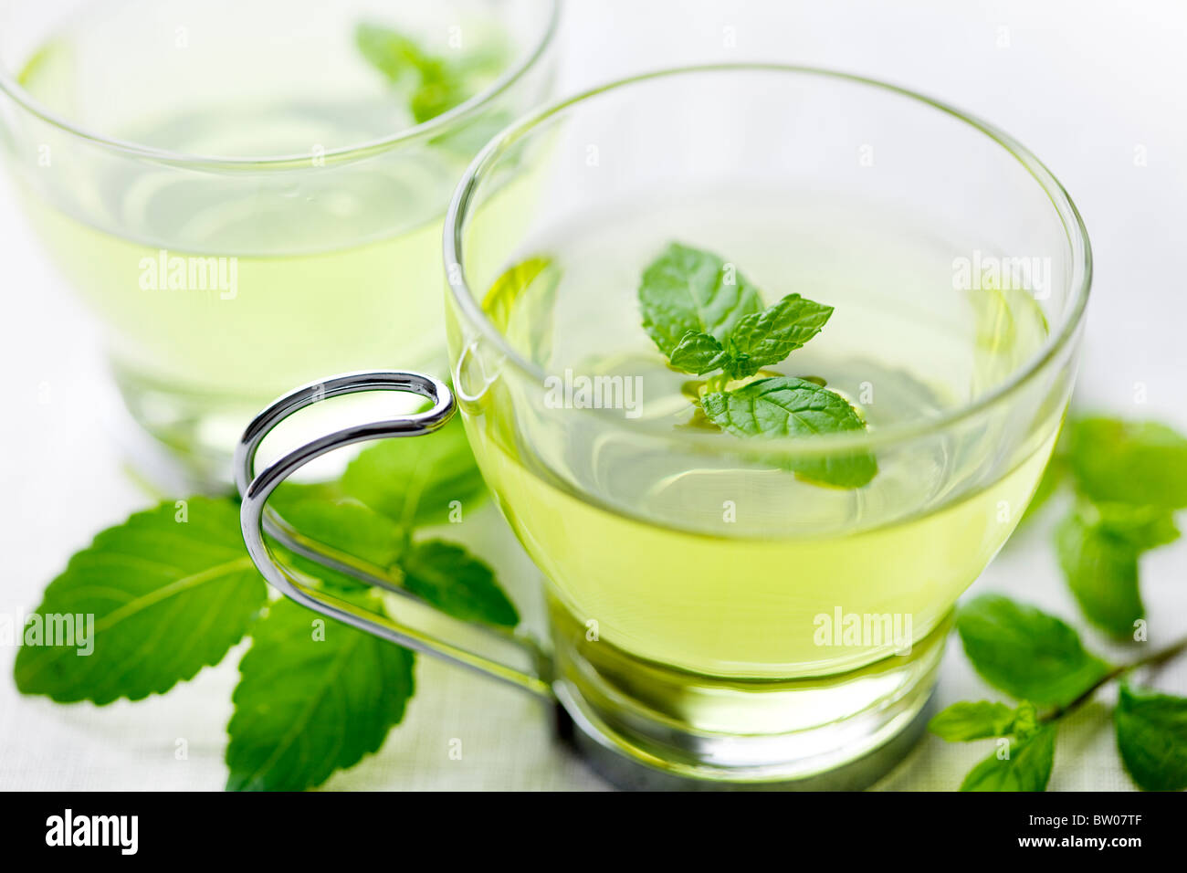 closeup of fresh mint tea, surrounded by fresh mint - Stock Image
