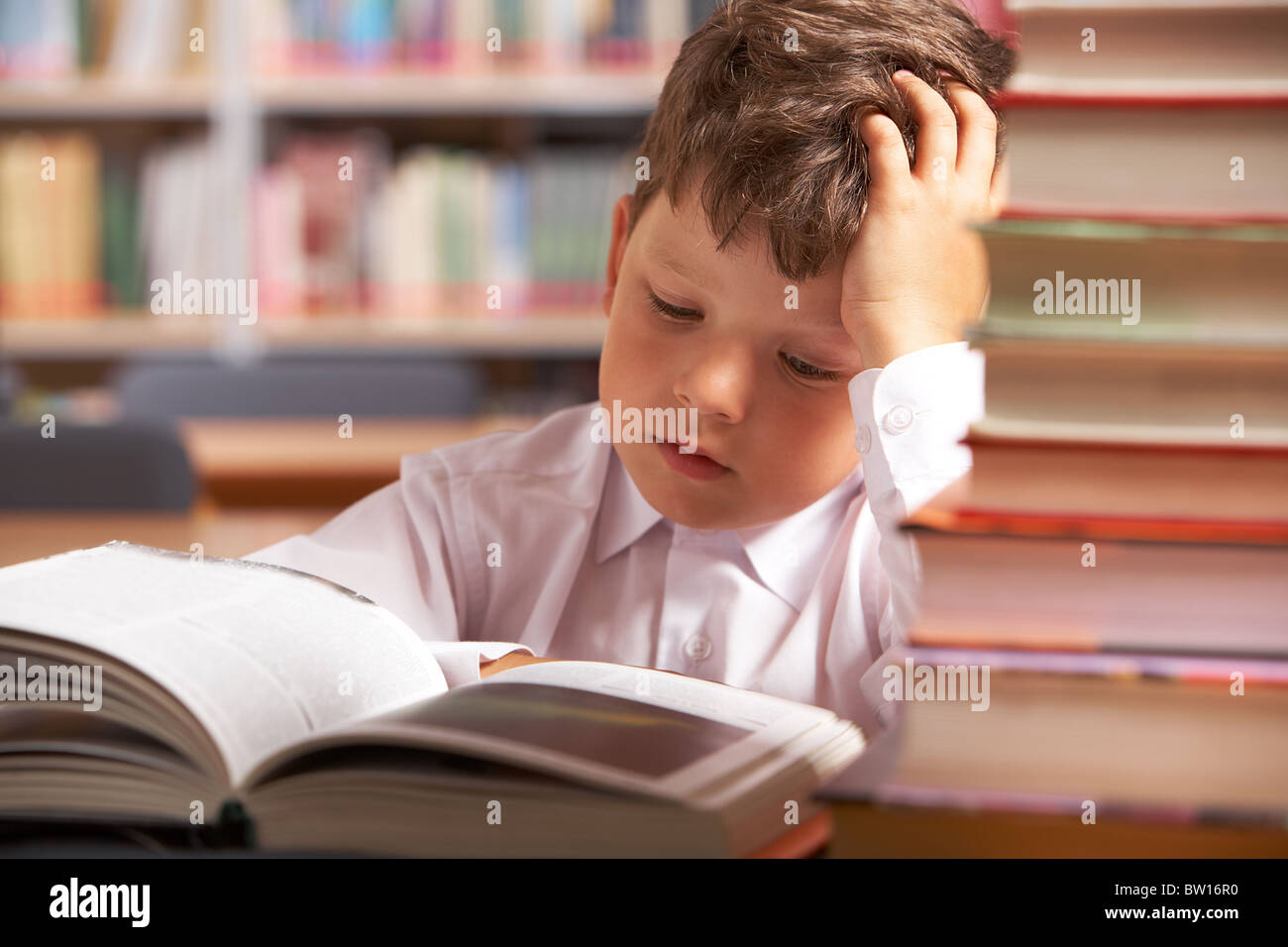 Image of interested schoolkid reading book in the library - Stock Image