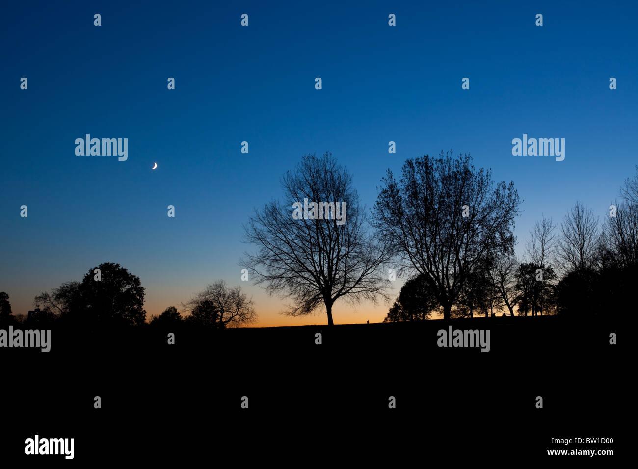 Hampstead Heath at twilight, Highgate, London, England, UK - Stock Image