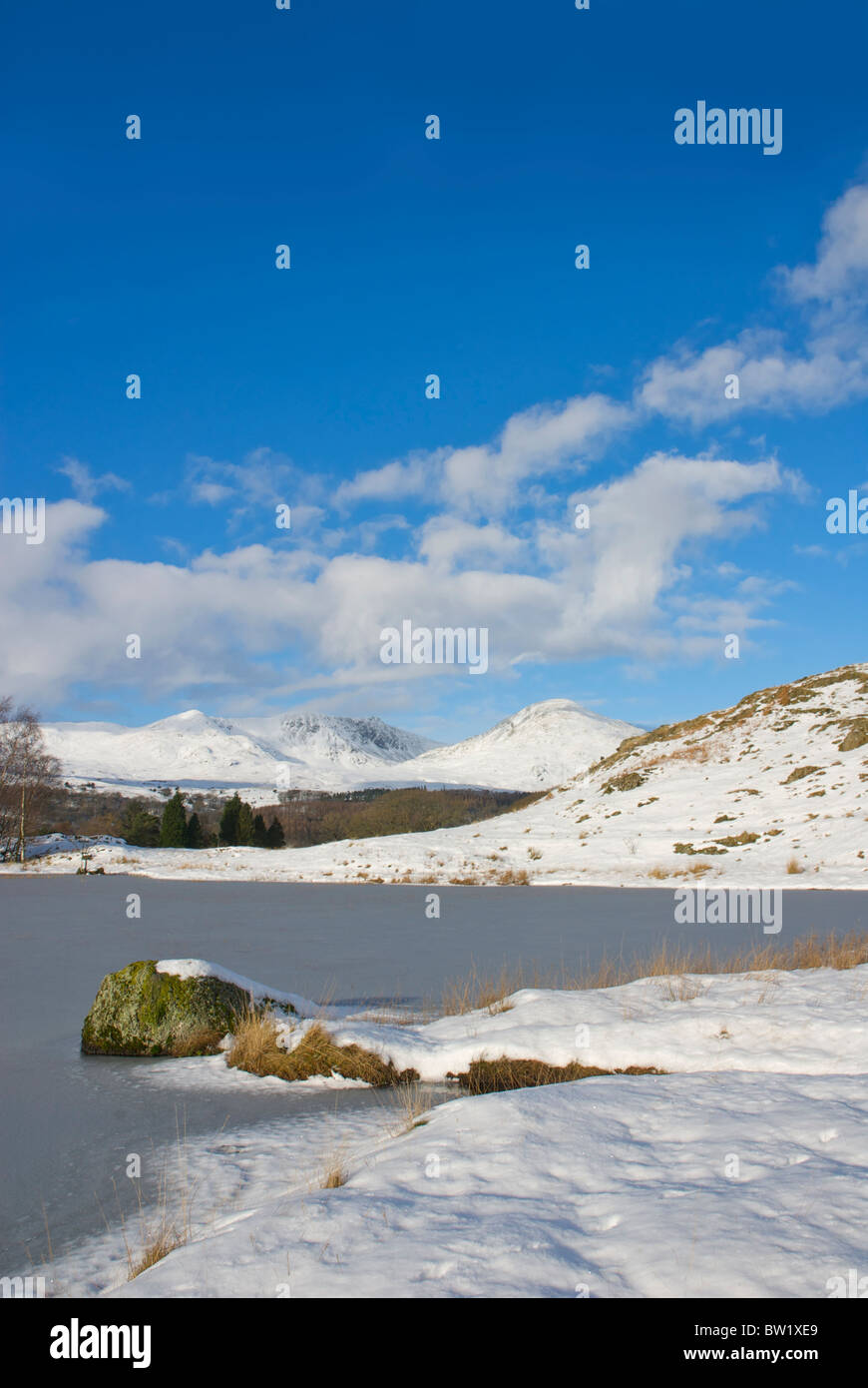 Kelly Hall Tarn, on Torver Common, and the Coniston hills, Lake District National Park, Cumbria, England UK - Stock Image