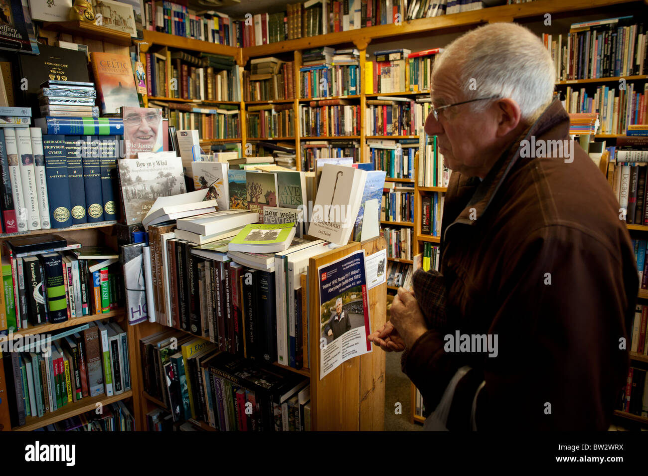 A man browsing welsh books in Ystwyth Books new and used independent bookshop, Aberystwyth Wales UK - Stock Image