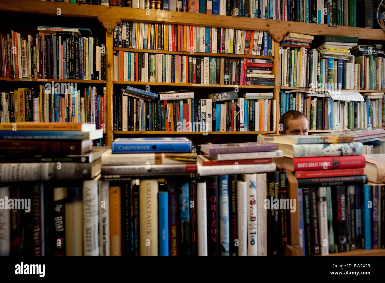a man in Ystwyth Books new and used independent bookshop, Aberystwyth Wales UK - Stock Image