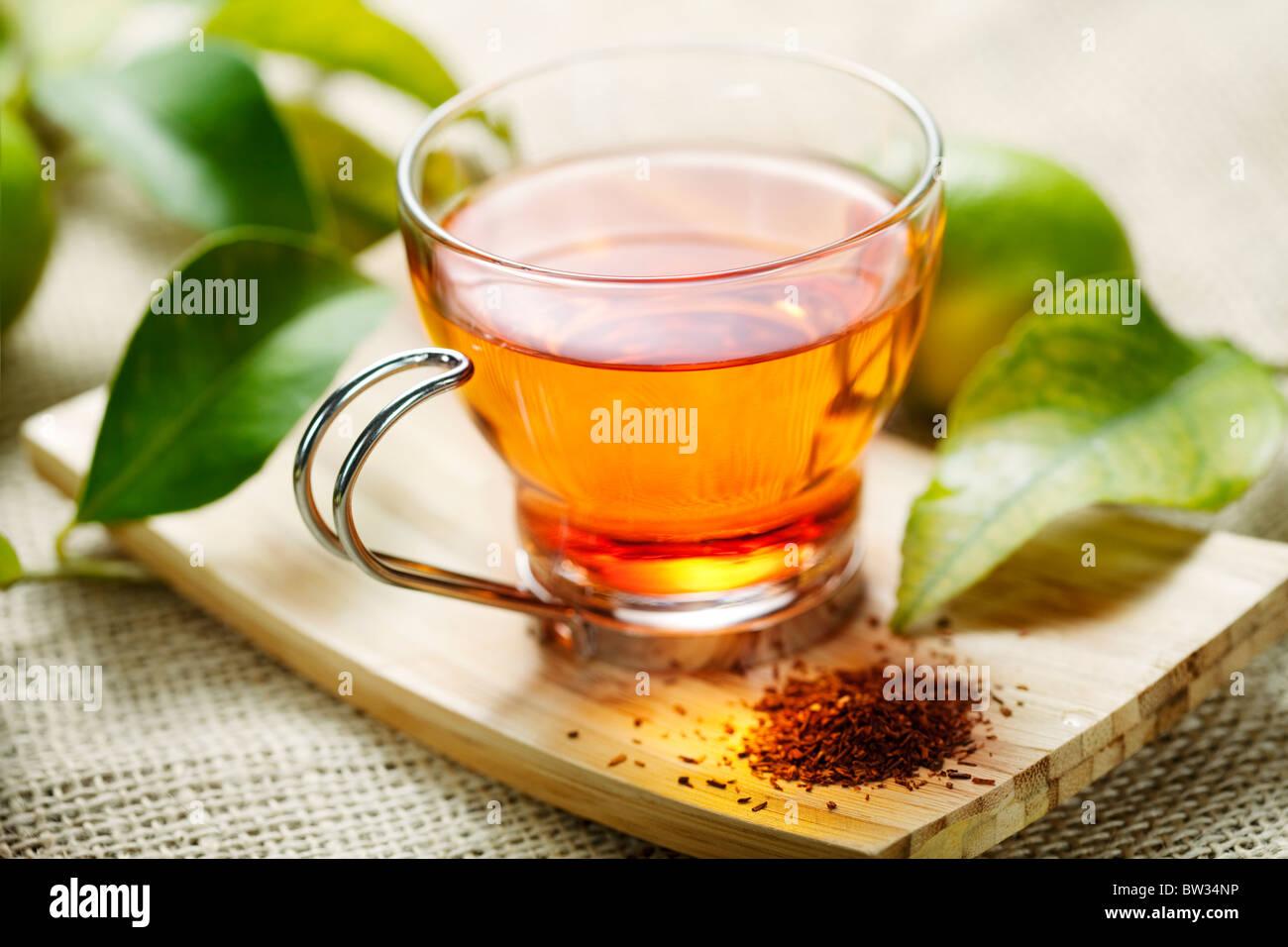 rooibos tea - Stock Image