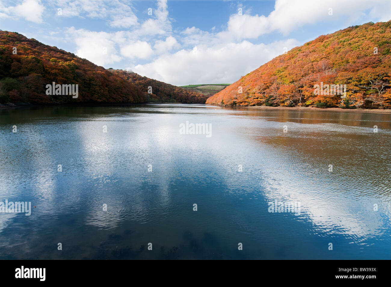 Autumn colours around the West Looe River Cornwall Stock Photo
