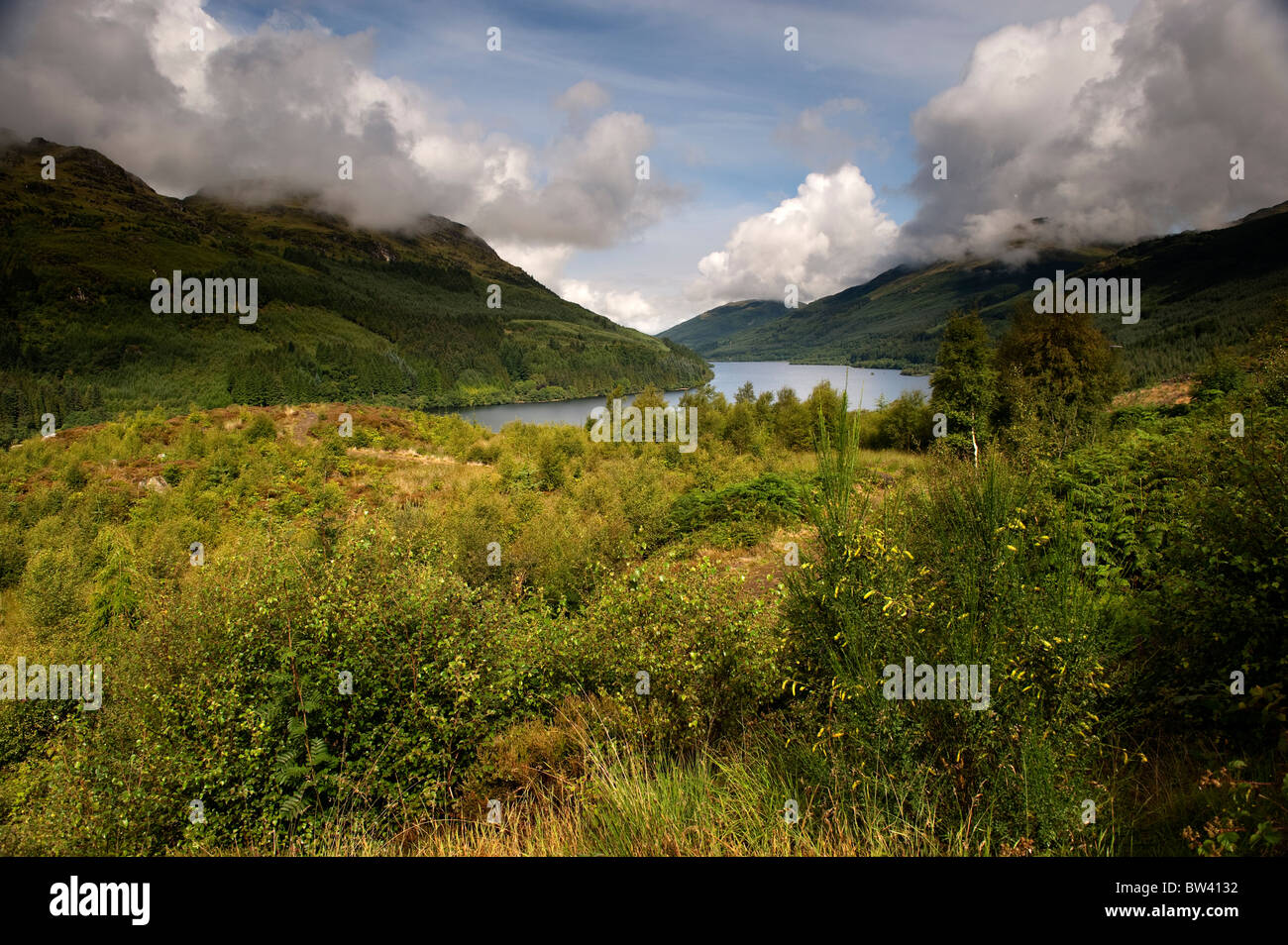 Loch Eck in Argyll. Late summer. - Stock Image