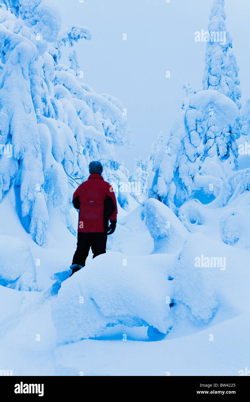 Snowshoer at Vallee des Fantomes, Monts-Valin National Park, Quebec - Stock Image